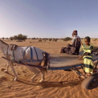 UN: Great Green Wall VR Film
