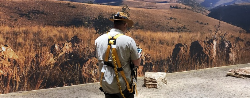 Fossils from the Cradle of Humankind – AR Experience