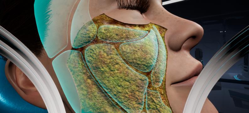Galderma Anatomy VR